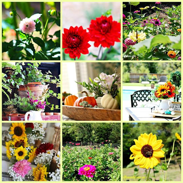fall-decor-porch-farmhouse-pumpkins-athomewithjemma-flowers