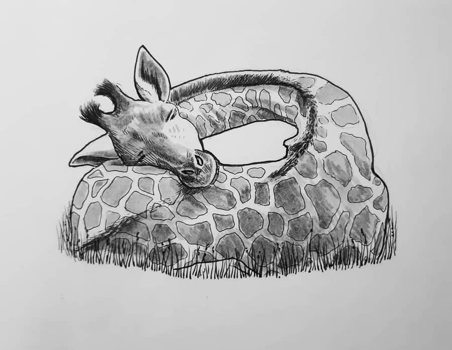 01-Sleeping-giraffe-Jonny-Seymour-www-designstack-co