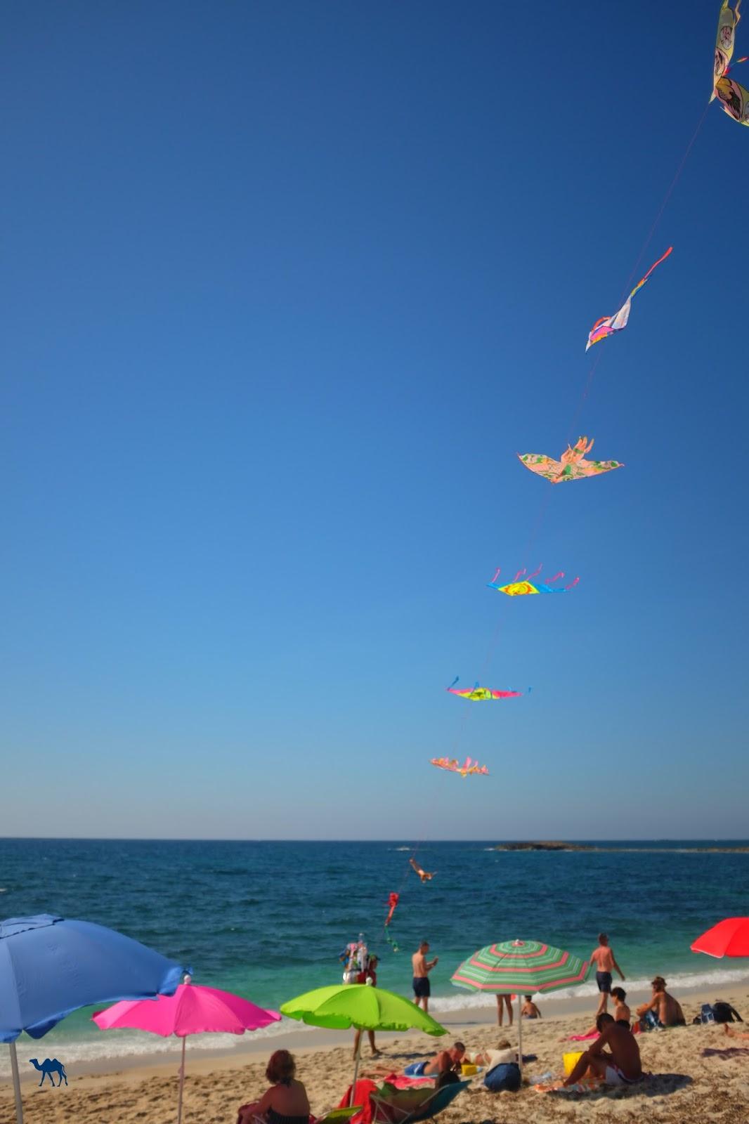 Le Chameau Bleu - La plage aux cerf volants