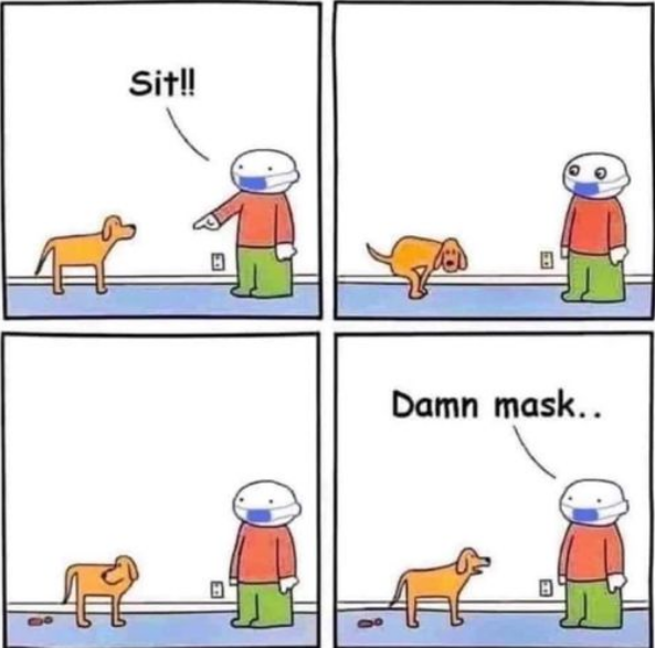 dog+confuses+shit+from+sit+from+masked+v