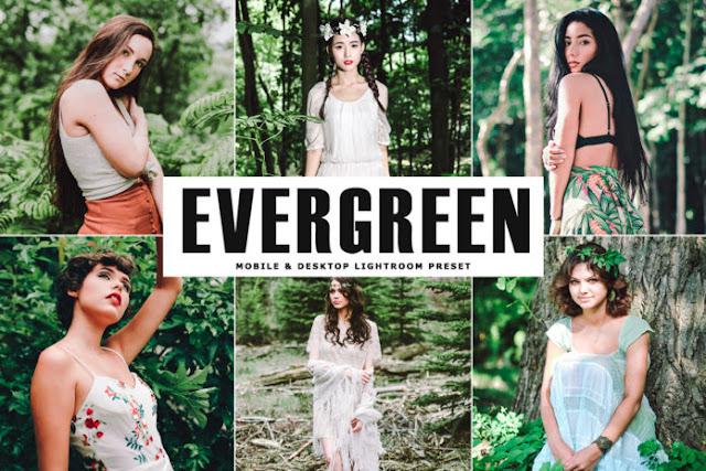 Download Free Evergreen Mobile & Desktop Lightroom Preset