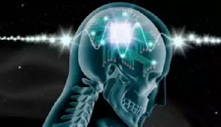 Discovery:Scientist Finally link Human Brain To Computer