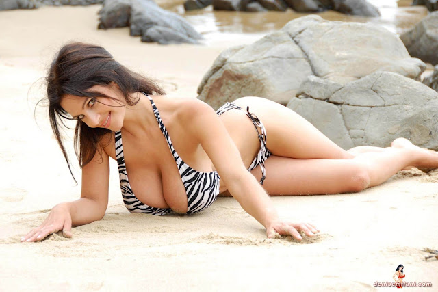 Denise Milani Beach Zebra HD Sexy Photoshoot Hot Photo 26