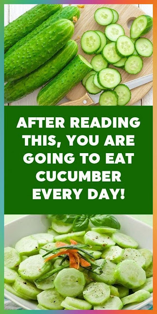 After Reading This, You Are Going To Eat Cucumber Every Day
