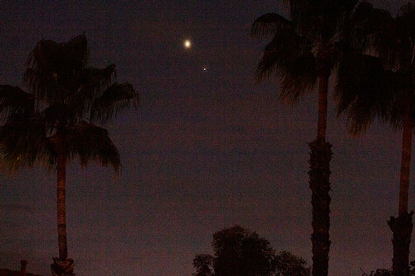 Jupiter and Saturn through the palm trees, DSLR, 150mm, 1/15 second (Source: Palmia Observatory)