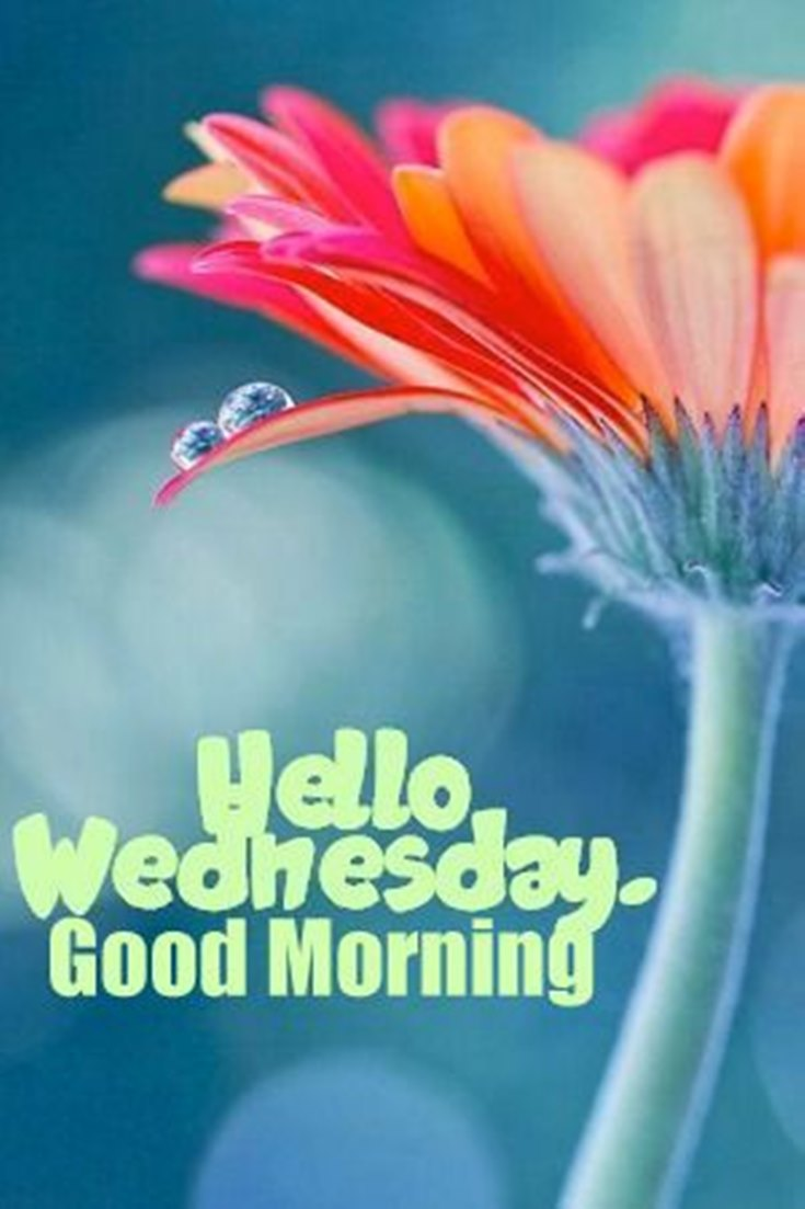 hello Wednesday good morning