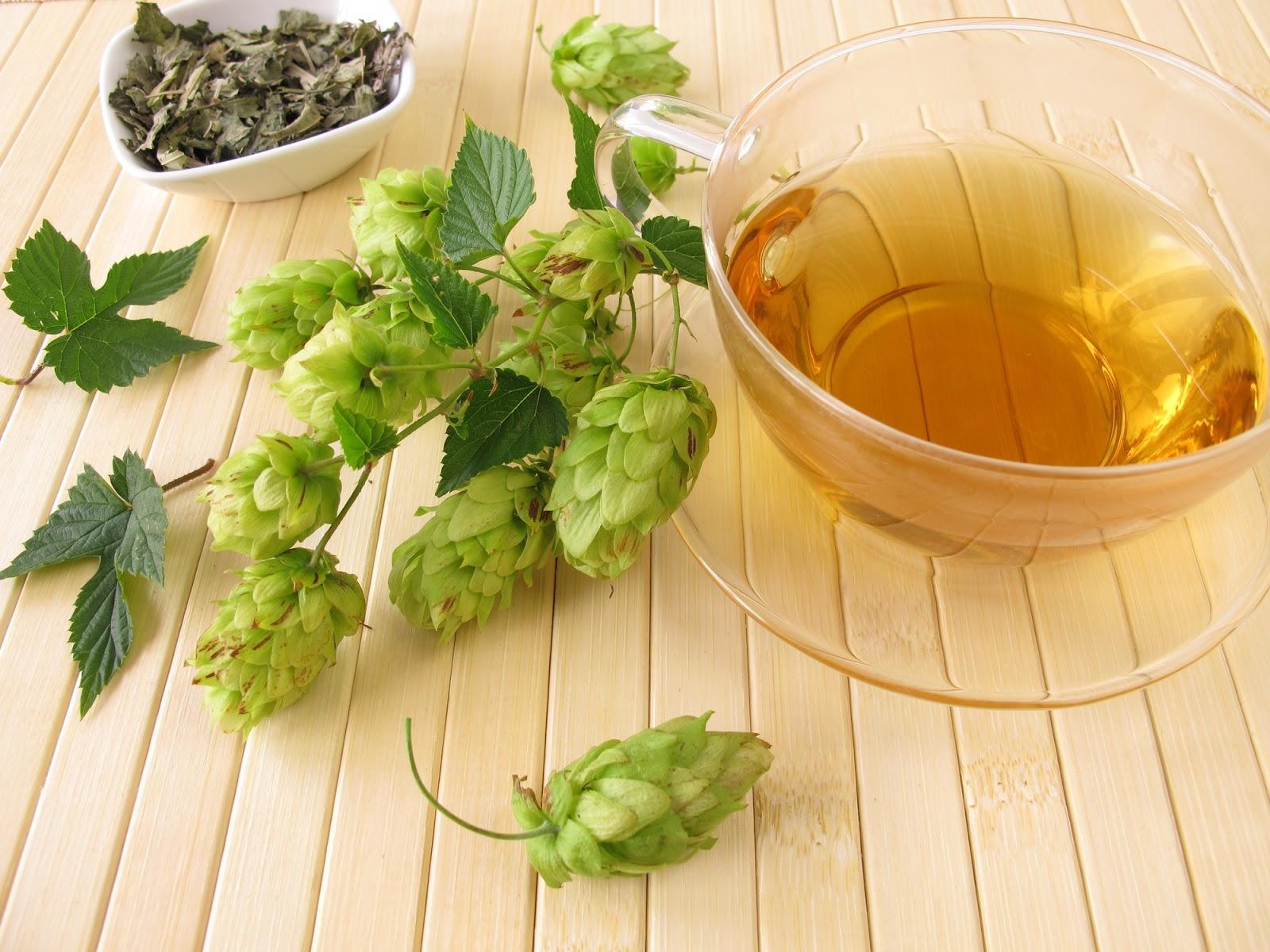 10 лучших успокоительных натуральных чаев для хорошего и крепкого сна