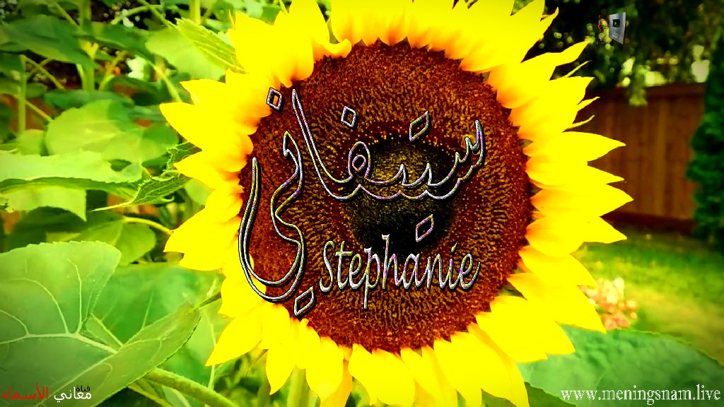 معنى اسم ستيفاني وصفات حاملة هذا الاسم Stephanie