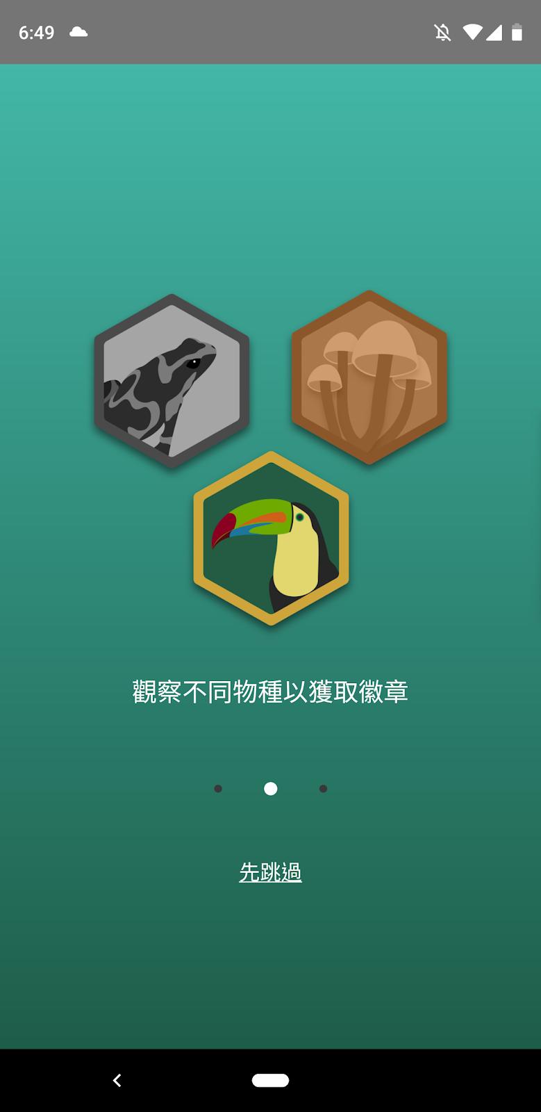 Seek 自然生物辨識App 中文版,AI 偵測昆蟲、鳥類與動植物