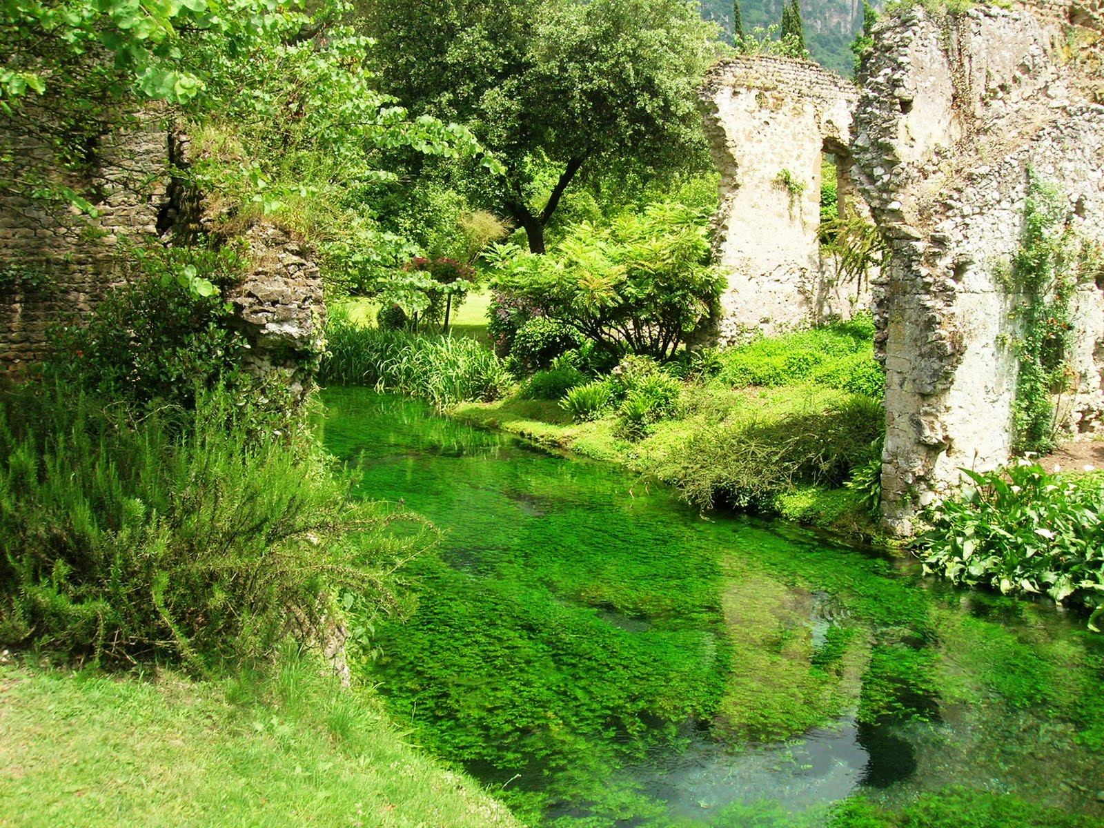 Giardini di ninfa cisterna di latina gardens i like for Garden giardini