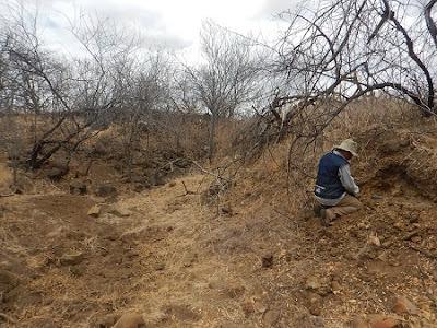 CPRM descobre novo corpo kimberlítico na Província de Borborema