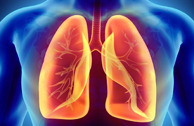 Four Ingredients for lungs