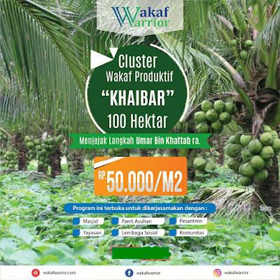 Investasi Kavling Produktif Grand Coco Village - WAKAF Kavling Kebun Kelapa