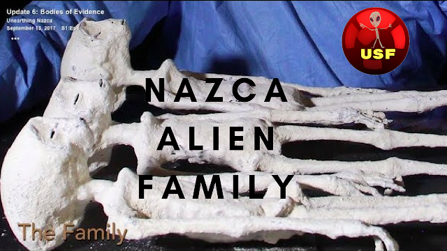 These Nazca mummies Nazca Aliens are very real.