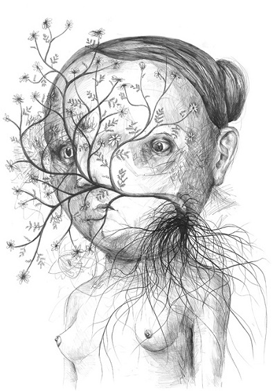 """Flowers"" - Stefan Zsaitsits - 2010 
