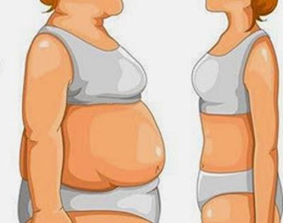 infusions cicatrisantes pour réduire la distension abdominale