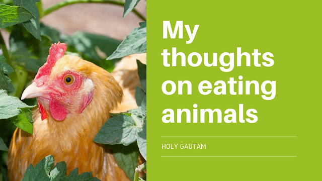 My thoughts on eating animals