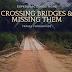 Crossing Bridges and Missing Them