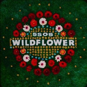 Wildflower Lyrics - 5 Seconds of Summer