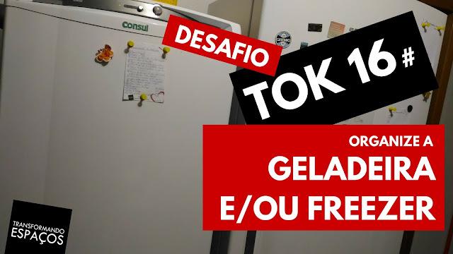 Organize a geladeira e/ou o freezer! - Tok 16 | Desafio 52 toks de organização e decor