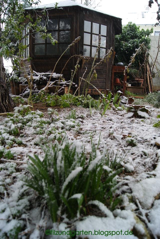 Es schneit im Februar
