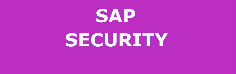 SAP Security Consultant