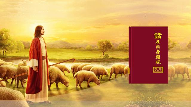 耶穌, 福音, 審判, 恩典, 道成肉身