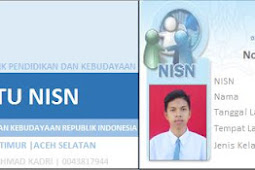 Aplikasi_VBA_excel_44_Kartu NISN model Form