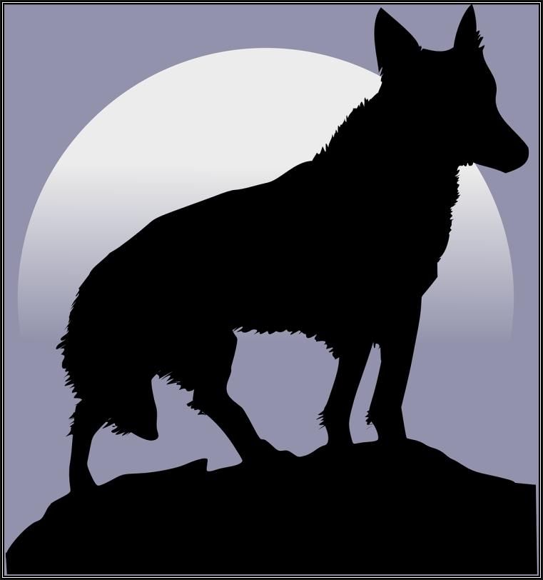 Lobo y luna