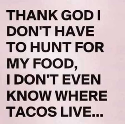 Hilarious And Funny Quotes And Sayings | Funny Quotes, Just To Funny