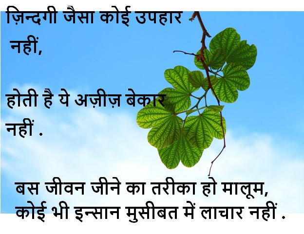 life shayari in hindi, life shayari images