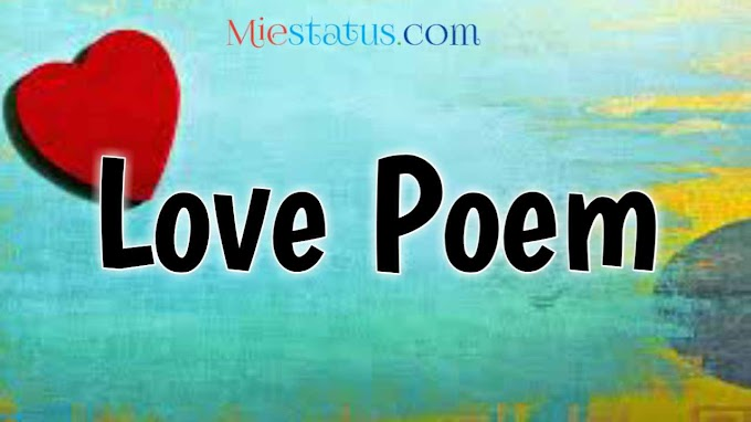 love poem in english and Hindi   you are love poem