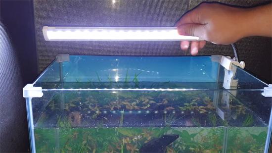 Planted Aquarium LED Lighting