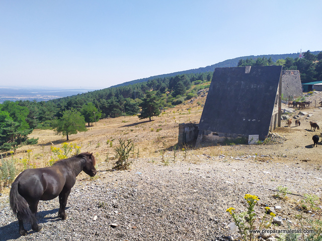 senderismo Guadarrama Alto del León