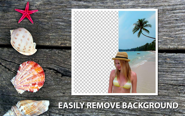 Teorex PhotoScissors  Automatically Remove & Replace Image Background!