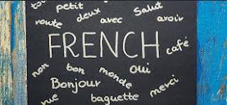 Fransız Dili ve Edebiyatı nedir