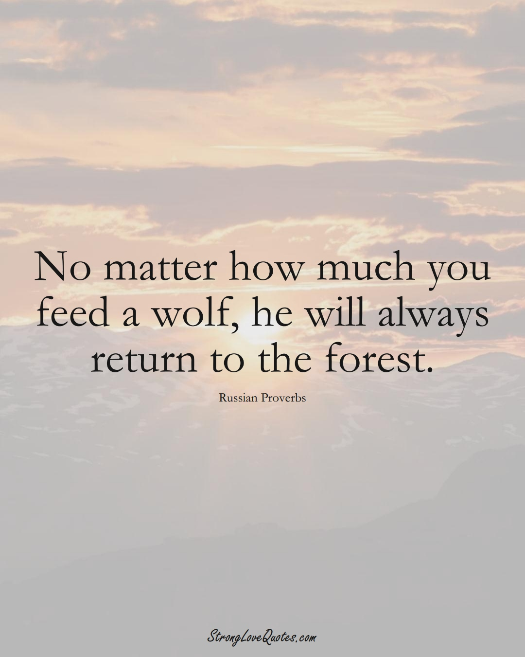 No matter how much you feed a wolf, he will always return to the forest. (Russian Sayings);  #AsianSayings