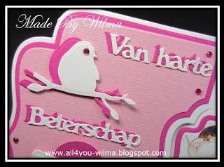 """Een close-up van vogeltjes op een tak en de tekst """"Van harte Beterschap"""". A close-up of birds on a branch and the text """"Get well soon"""" (Dutch words)."""