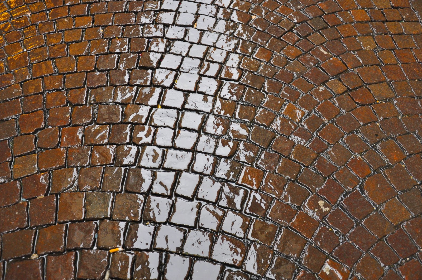 wet pavement rain historical centre Vicenza