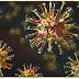 Primeira exposição ao novo coronavírus pode não produzir memória imune