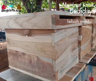 Cara Membuat Kotak Lebah Madu