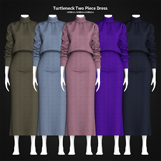 Turtleneck Two Piece Dress