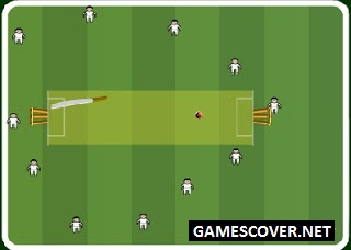 Play Slog Cricket Game Online