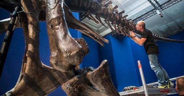 Dögevő kistestű emlősök lakmároztak az elhullott dinoszauruszokból