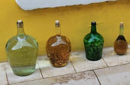 Vinagre ou água sanitária (hipoclorito de sódio) para higienizar verduras?