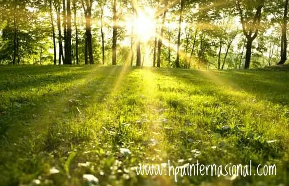 http://www.hpainternasional.com/2020/03/manfaat-sinar-matahari-pagi-untuk.html