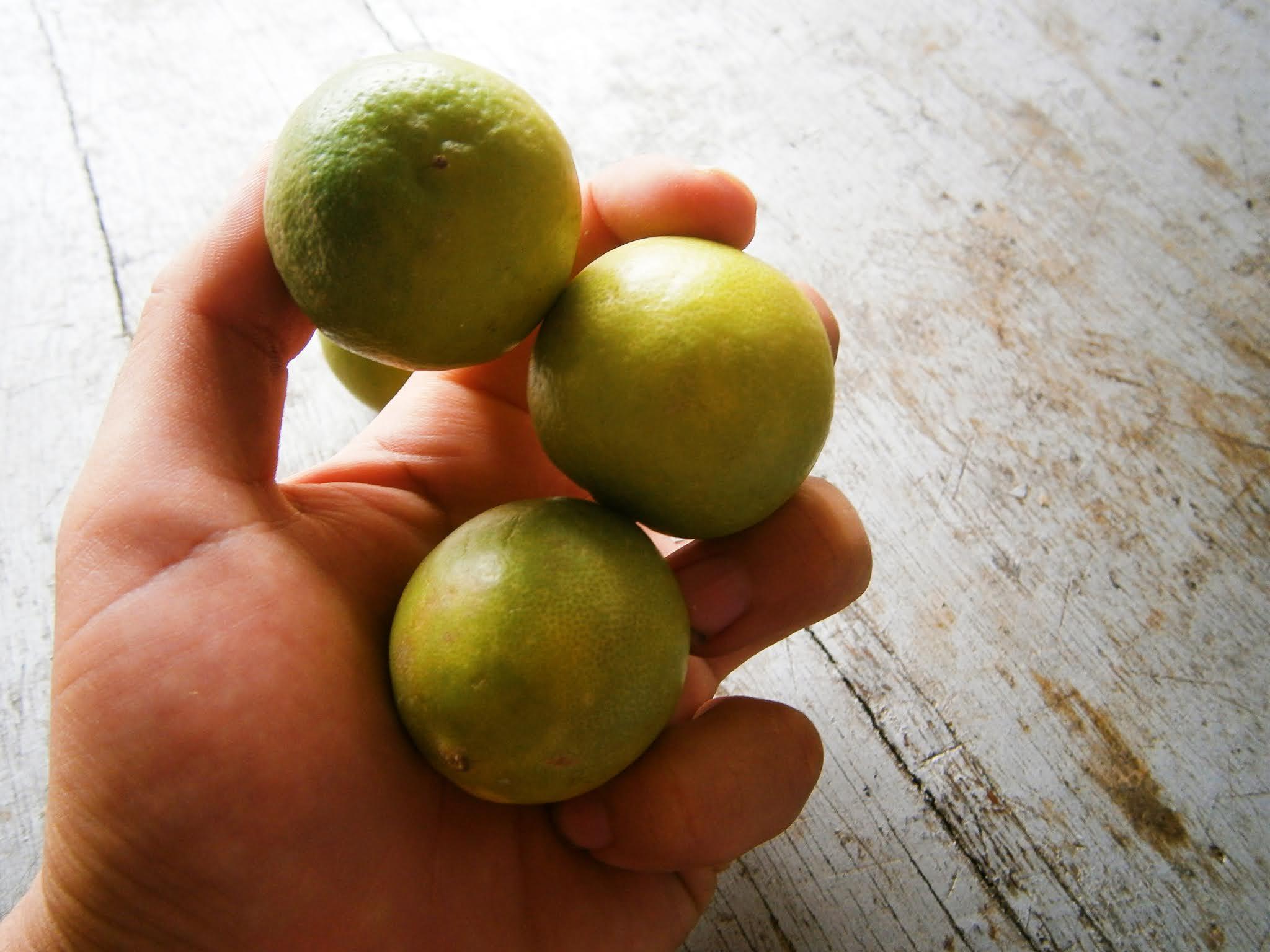Limones frescos costenido de una mano con fondo de madera plomo
