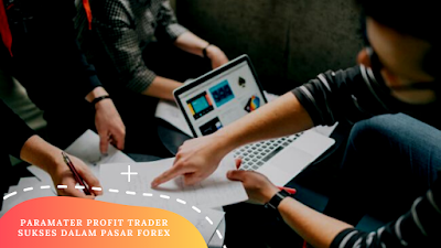 Parameters of Successful Trader Profits in Forex
