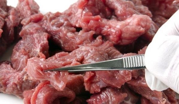 carnes-mas-dañinas