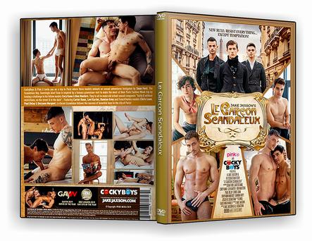 DVD Le Garcon Scandaleux xxx 2019 - ISO